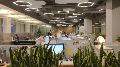 Проект офиса компании «Бионика»